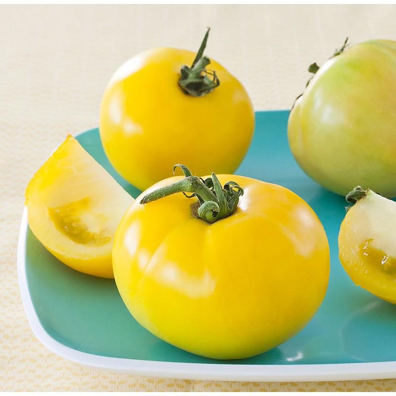 Pomidorai Lemon Boy F1 Daigai