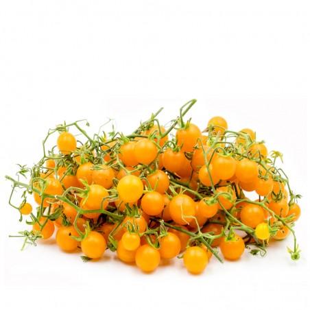 Pomidorai Perun